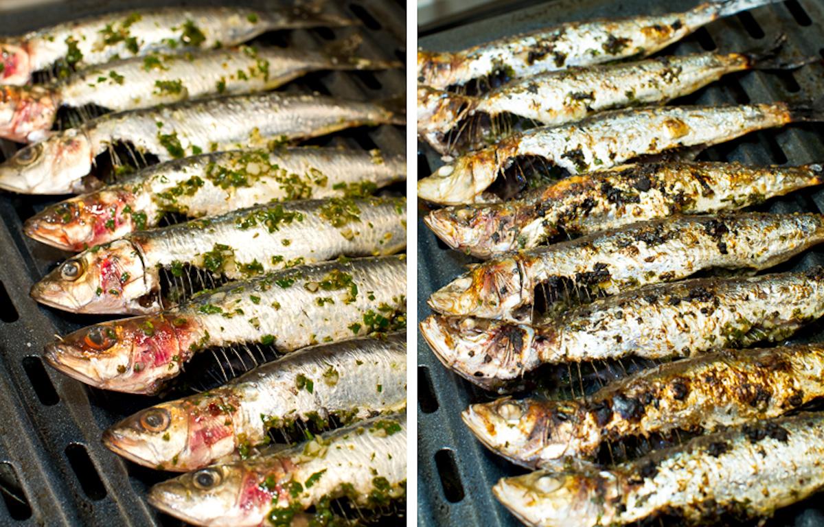 how to cook fresh sardines fish