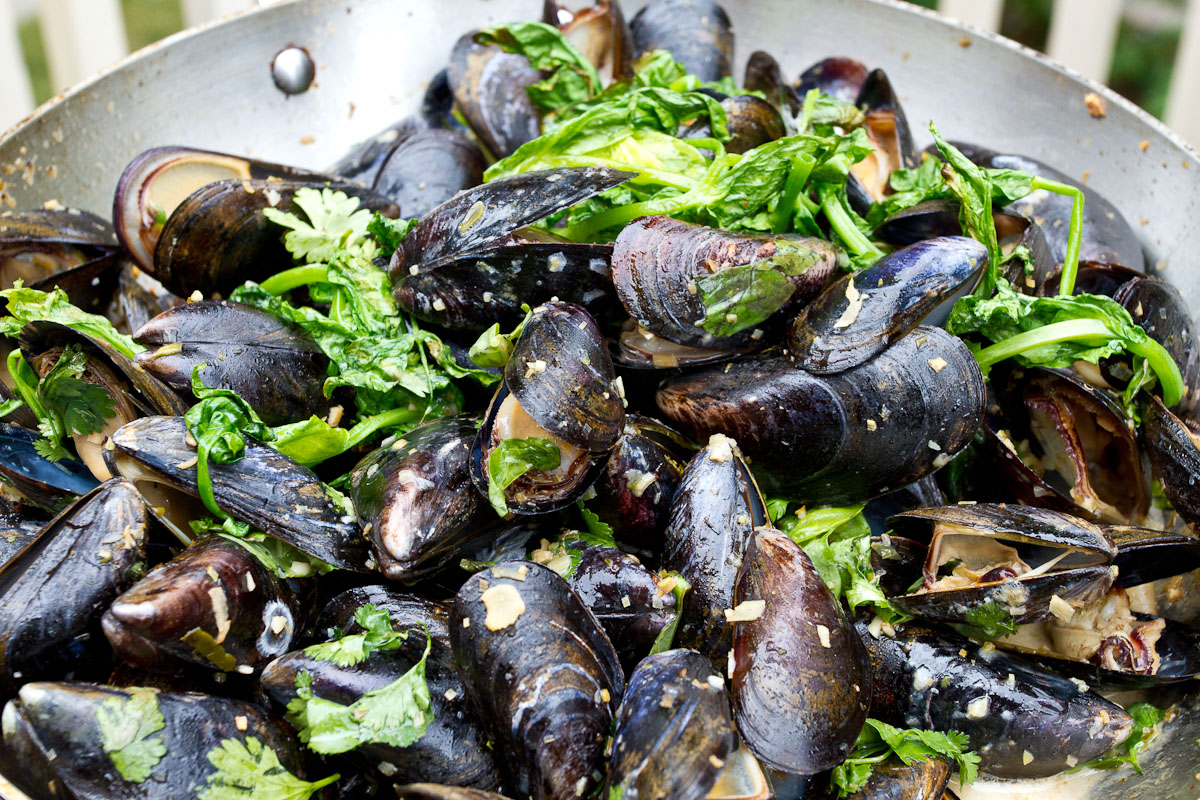 Grilled Mussels with Coconut Curry Broth | The Garum Factory