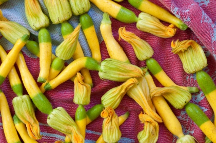 Torchio Pasta with Squash Blossoms-6