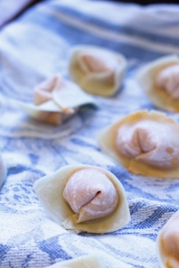 Sweet Potato Wontons with Cashew Sauce-9