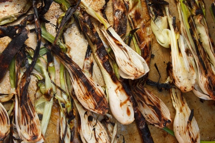 Grilled Spring Onions with Romesco TGF-28