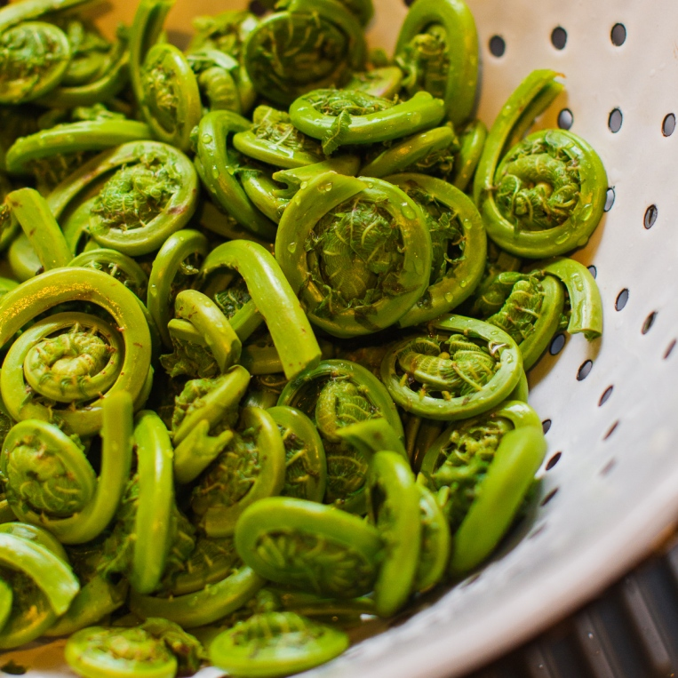 Fiddleheads and Ramps with Salami-7