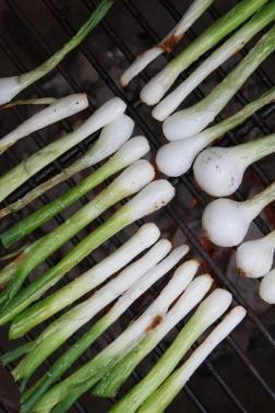 Spring Onion and Strawberry Salad with Pistachio Pesto-13