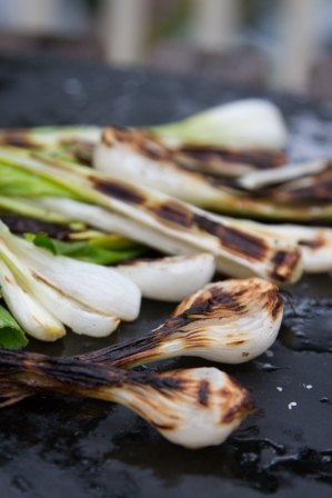 Spring Onion and Strawberry Salad with Pistachio Pesto-14