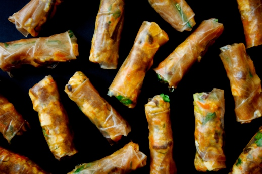 Bicycle Spring Rolls-1