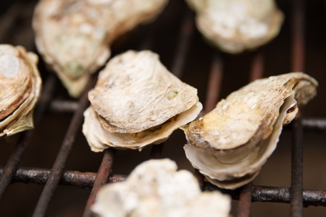 Grilled Oysters with Wasabi Mayo-10