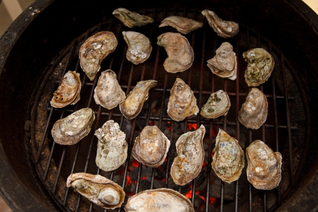 Grilled Oysters with Wasabi Mayo-9