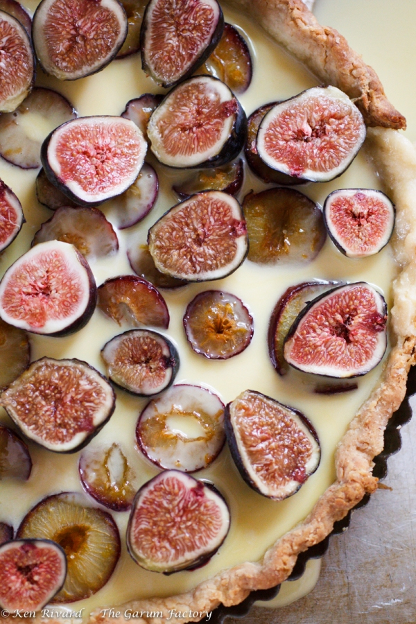 Fig, Plum and Hazelnut Tart-222-8508