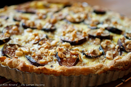 Fig, Plum and Hazelnut Tart-283-8569