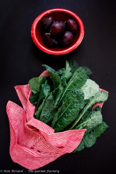 Kale Salad with Plums, Roquefort and Walnuts-8909
