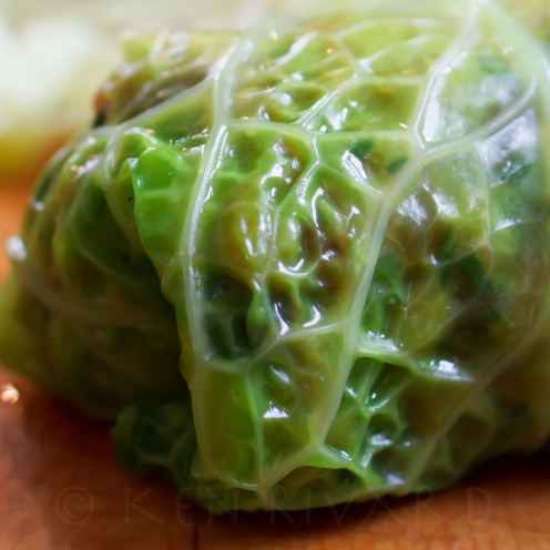 Stuffed Cabbage with Farro, Mushrooms and Chicken Livers-37-