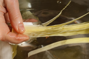 Braised Leeks with Meyer Lemon, Pancetta and Parmigiano Reggiano -15
