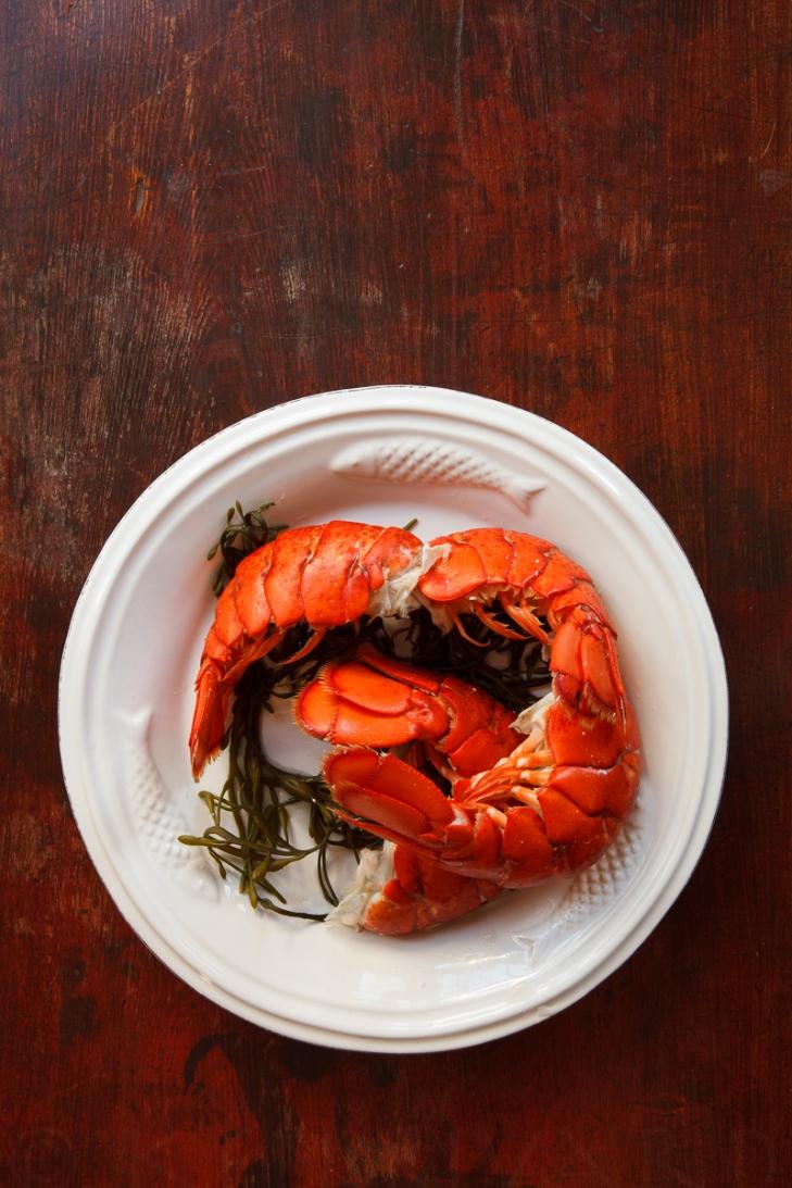 Lobster Stuffy-2-16134