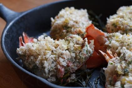 Lobster Stuffy-449-16581