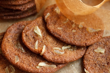 Sadie's Gingersnaps (6 of 26)