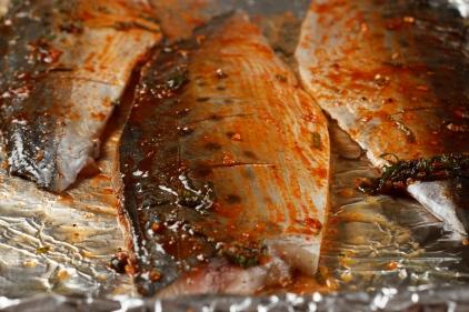 Spanish Mackerel, Saffron and Honey with Fennel - Blood Orange Salad-33
