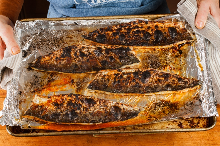 Spanish Mackerel, Saffron and Honey with Fennel - Blood Orange Salad-38