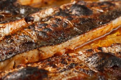 Spanish Mackerel, Saffron and Honey with Fennel - Blood Orange Salad-39