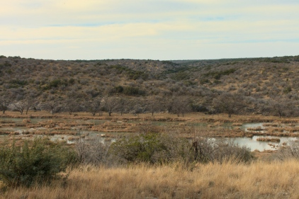 View of the Llano River from the ranch.