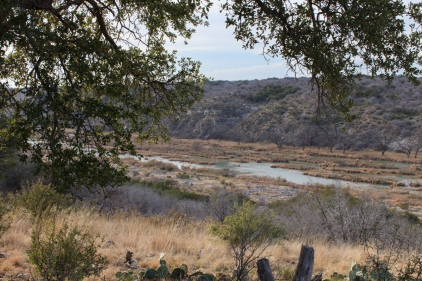 Texas-9874