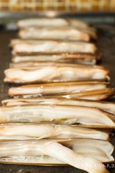 Razor Clams with Preserved Lime-1654