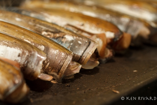 Razor Clams with Preserved Lime-1662