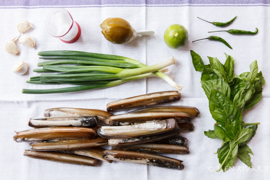 Razor Clams with Preserved Lime-1708