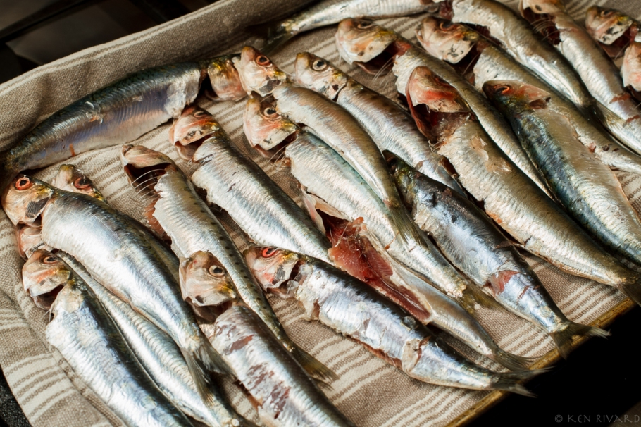 Grilled Sardines with Ramps and Rhubarb Agrodolce-4658
