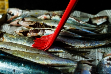 Grilled Sardines with Ramps and Rhubarb Agrodolce-4689