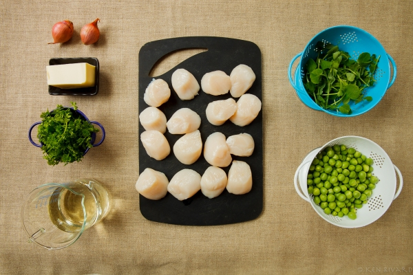 Scallops, peas and chervil-0020