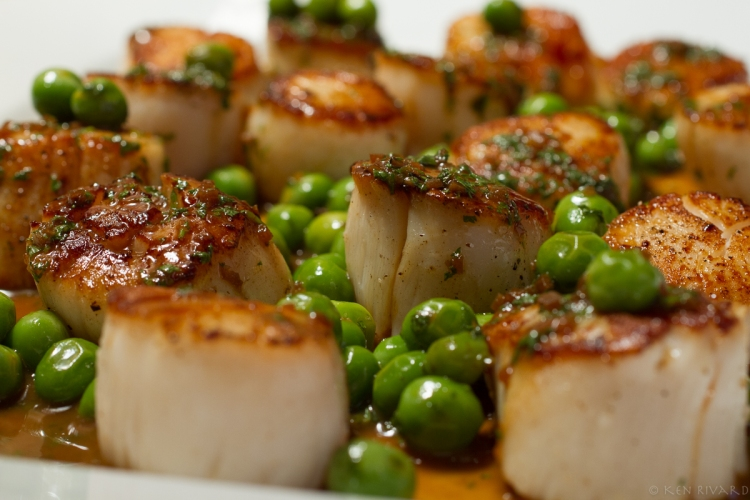 Scallops, peas and chervil-5955