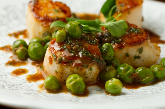 Scallops, peas and chervil-5962