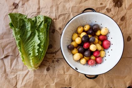 Potato Salad with Wilted Lettuce and Dijon Vinaigrette-0585