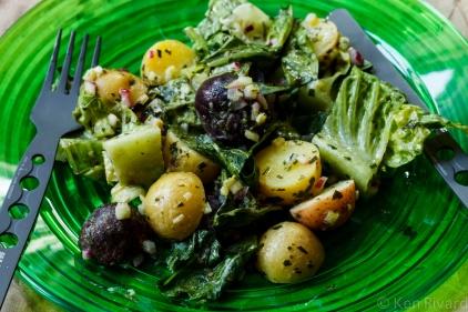 Potato Salad with Wilted Lettuce and Dijon Vinaigrette-0638