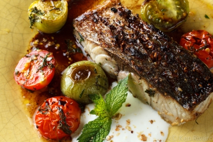 Bluefish with Dukkah, Tomatoes and Garlic Yogurt-2