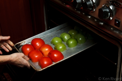 Bucatini with Red and Green Tomatoes-0664