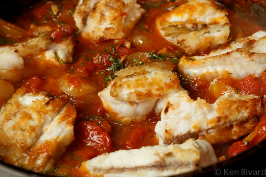 Pesce all' Acqua - Monkfish in Crazy Water-1473